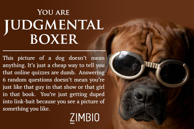 judgmentalboxer